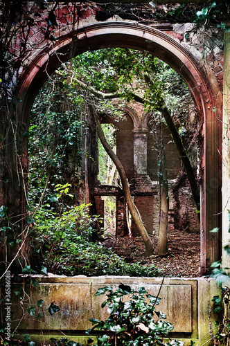 old abbey ruin #36586088