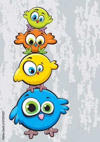 Fototapeta premium Rodzina ptaków