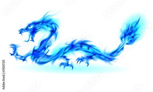 Fototapeta premium Blue fire Dragon