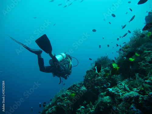 Photo diving in sea