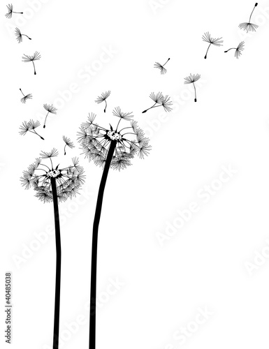 Naklejki na meble Nasiona na wietrze
