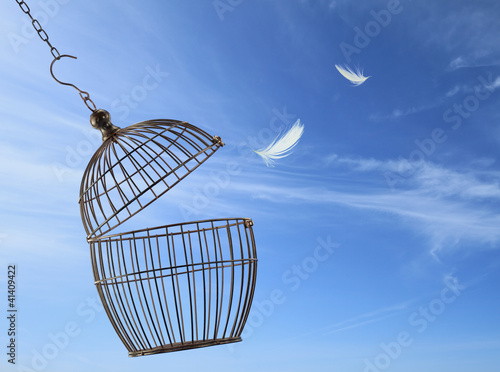 Fotografia, Obraz Freedom concept. Escaping from the cage.