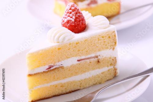 Fényképezés ショートケーキ