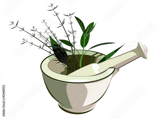 Medical mortar and pestle with herbs Fototapeta