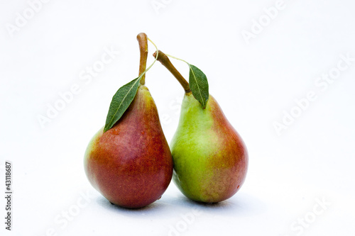 Two ripe pears with the Leaf