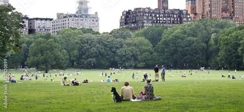 Tableau sur Toile Central Park Great Lawn