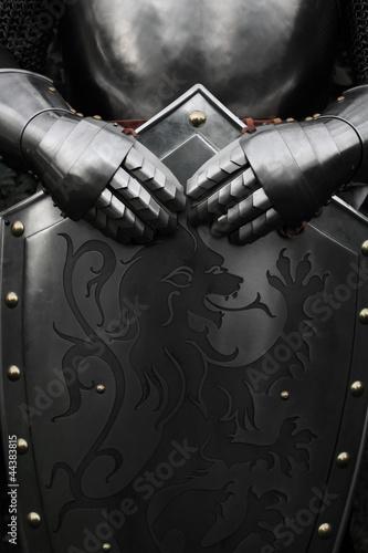 knight Fotobehang