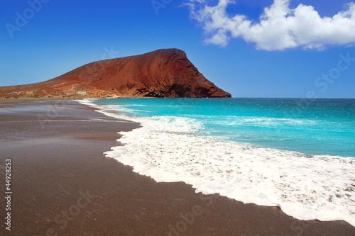 Canvas Print Beach Playa de la Tejita in Tenerife
