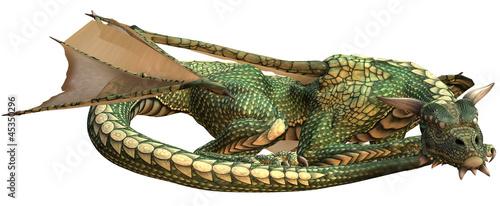 Fototapeta premium Sleeping Green Fantasy Dragon