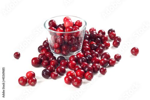 Billede på lærred Fresh cranberries Isolated on white