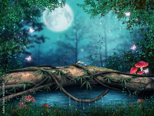 Fotografia Drzewo nad zaczarowanym stawem