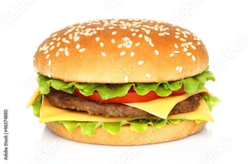 Fotografie, Tablou Big hamburger on white background