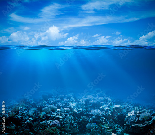 Underwater coral reef seabed view with horizon and water surface