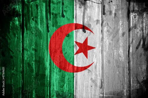 Flag of Algeria #47164651