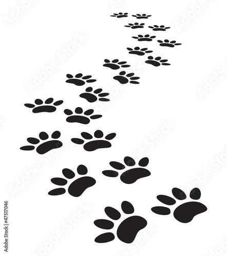 animal paw prints #47517046