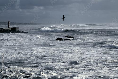 Blue winter seascape