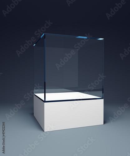 Stampa su Tela empty display case