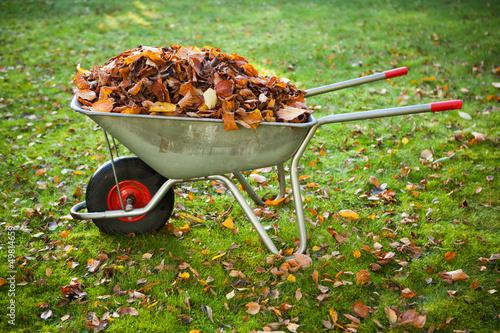 Photo wheelbarrow full of dried leaves