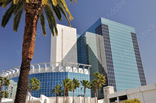 Carta da parati Glass towers and palm trees