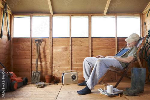 Fotomural Asleep in shed