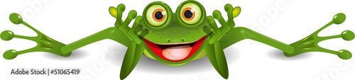 Tablou Canvas funny frog is on his stomach