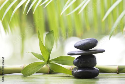 bambù con sassi terapeutici