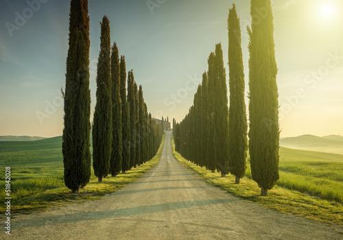 Fotografie, Obraz Tuscany, Landscape. Italy