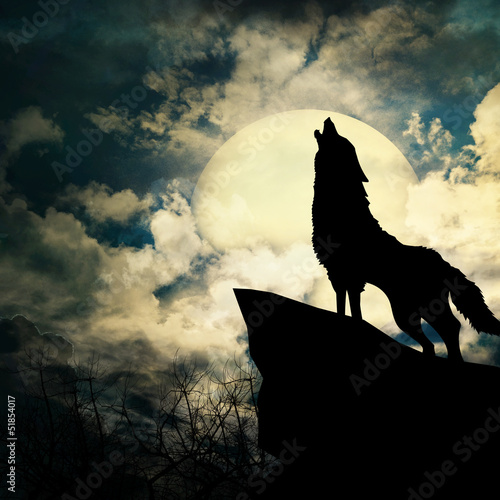 Fototapeta wolf in silhouette howling to the full moon