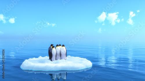 Fotografie, Obraz penguins