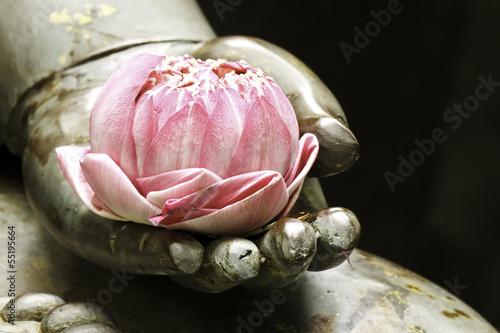 Foto Rosa Lotus in der Hand von Buddha
