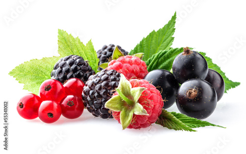 Collection of wild berries on a white background