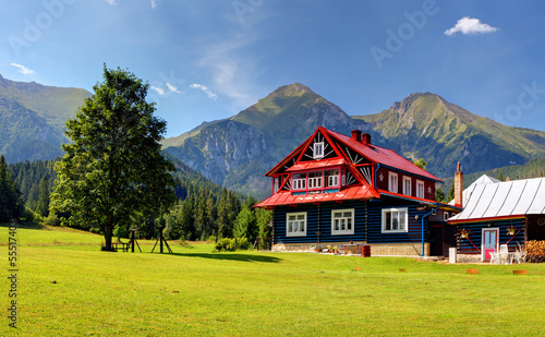 Chalet in Mountain #55517403