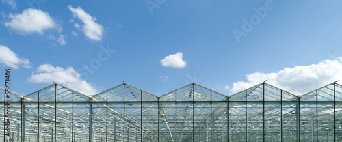 Fotografiet greenhouse exterior