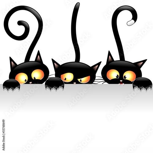 Funny Cats Cartoon with Panel-Gatti Buffi con Pannello #55768649
