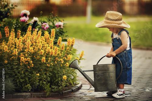 Fotografija cute little boy watering flowers watering can