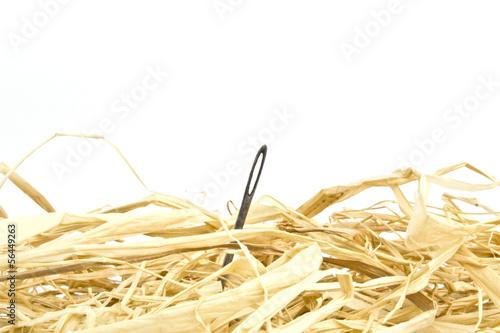Wallpaper Mural Needle in a haystack