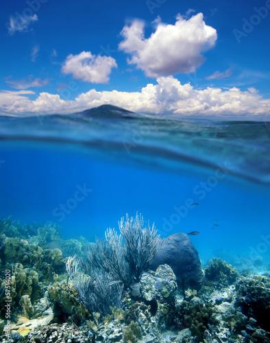 Rafa koralowa z chmurnym niebieskie niebo horyzontu rozłamem