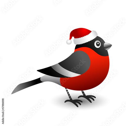Bullfinch in red hat Fototapeta