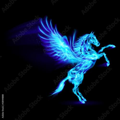 Carta da parati Fire Pegasus.