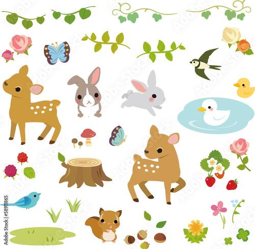 Fotografiet 森の小動物と草花