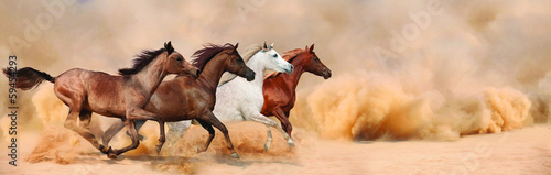 Canvas Print Herd gallops in the sand storm
