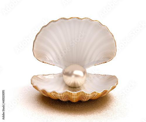Fotografia shell pearl