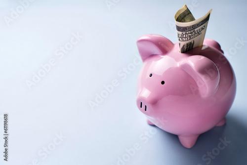 Slika na platnu Pink piggy bank with a dollar bill in the slot