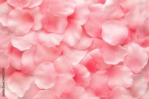 Canvas Print Beautiful delicate pink rose petals