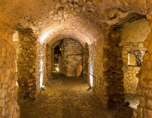 Fototapeta premium Gallo-Roman stodoła w Narbonne - Francja