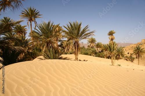 Fotografia avancée du désert