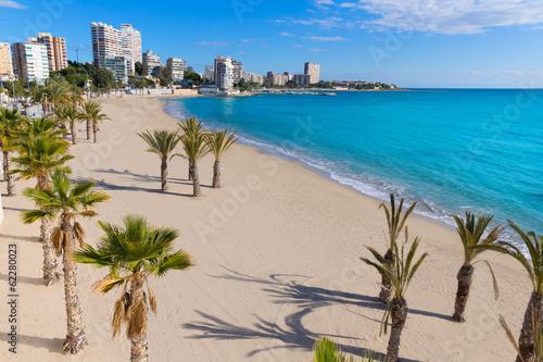 Leinwand Poster Alicante San Juan beach of La Albufereta with palms trees