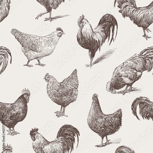 Fotografie, Obraz cocks and hens