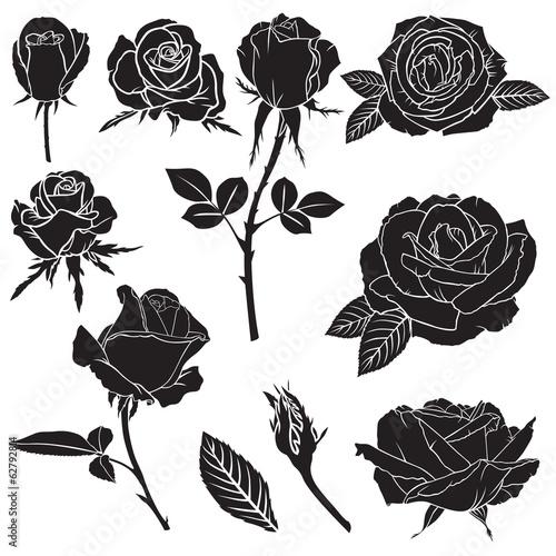 Silhouette lush rose flowers set #62792814