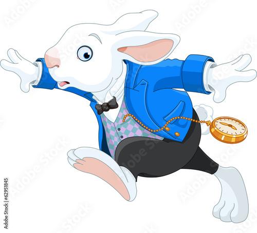 Photo Running White Rabbit